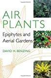 Air Plants: Epiphytes and Aerial Gardens