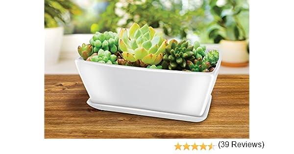 KOVOT Maceta rectangular de cerámica: incluye maceta con orificios ...