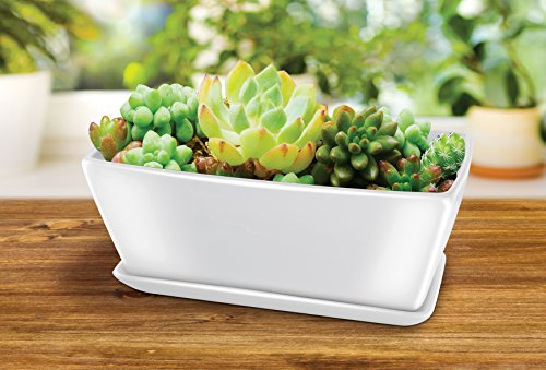 KOVOT Ceramic Rectangular Planter: Includes Planter With Draining Holes And Saucer Tray - Measures 10 1/2'L x 5 1/4'W x 4 1/2'H