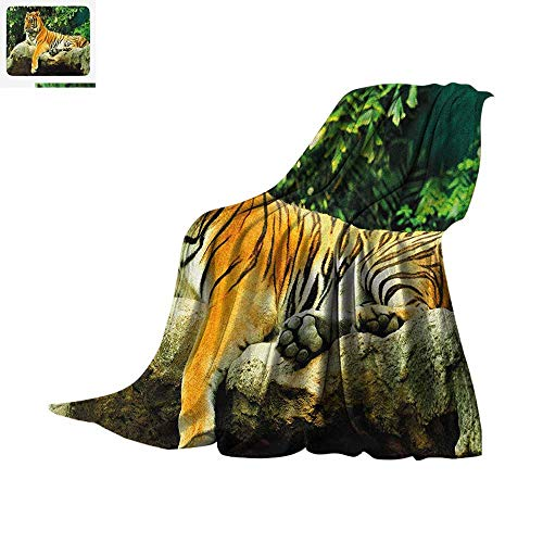 Tiger Super Soft Lightweight Blanket Resting Feline in The Forest on a Large Rock Sublime Carnivore Beast Beautiful Nature Custom Design Cozy Flannel Blanket 60