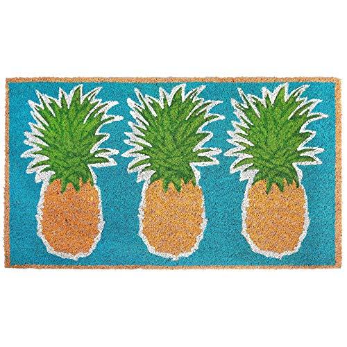 MISC Pineapple Doormat Outdoor, Aqua Blue Green Natural Three Pineapples Print Front Door Mat Tropical Fruit Theme Rug, Beach Coastal Nautical Accent Durable Entryway Carpet, 1'6