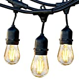 Brightech Ambience Pro Commercial Grade Outdoor Light Strand with Hanging Sockets 1W LEDs - 24 Ft Market Cafe Edison Vintage Bistro Weatherproof for Patio Garden Porch Backyard Party Deck Yard –Black
