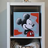Everything Mary Mickey Mouse Collapsible Storage