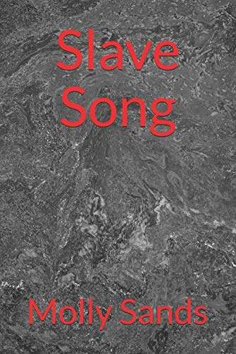 Slave Song by Independently published