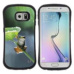 Hypernova Slim Fit Dual Barniz Protector Caso Case Funda Para Samsung Galaxy S6 EDGE [Feuille Nature Direction Vert Gris]