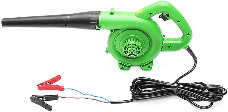 Soplador de coche de 12V24V, soplador eléctrico portátil de 1200W, secador de pelo de cosechadora de hojas de jardín de mano, aspirador de soplador de coche colector de polvo industrial,Verde,12V5mi: Amazon.es: Hogar