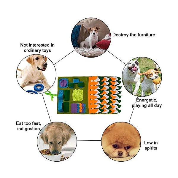 IFOYO Dog Feeding Mat, Dog Snuffle Mat Small/large Dog Training Pad Pet Nose Work Blanket Non Slip Pet Activity Mat for Foraging Skill, Stress Release, (S, L, XL) 6
