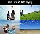 Stunt Kites - Best Reviews Guide