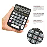 Basic Calculator: Catiga Office and Home Style