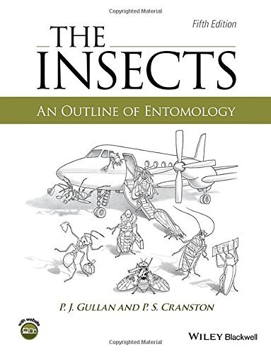 The Insects: An Outline of Entomology by P. J. Gullan - Mall Cranston