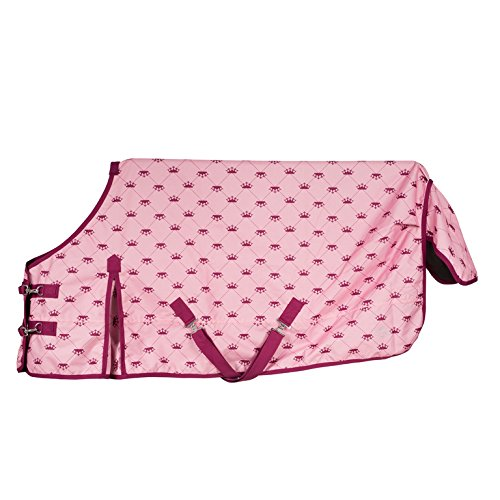 Horze 600D Waterproof Pony Turnout Sheet With Snap Hook Front Sea Pink 66''
