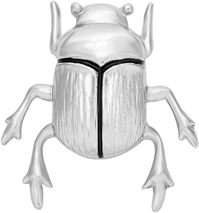 Black Beetle Insect Pendant Magnet