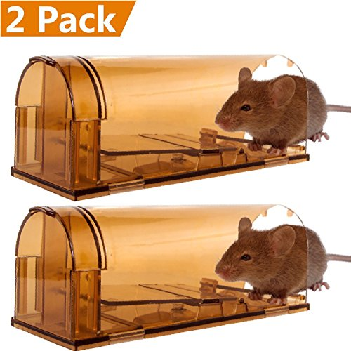 CaptSure Humane Rodent Trap, Live Catch and Release, No Kill, No Pain, Kids/Pet Safe, Easy To Set, For Indoor/Outdoor, Reusable Cage Box, For Small Rat/Mouse/Mole/Chipmunk Catcher That Works. 2 Pack