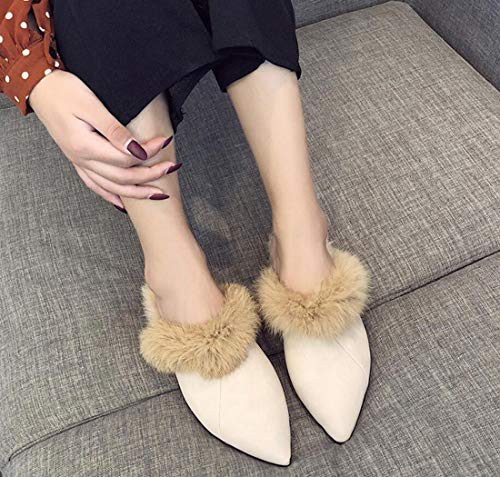 Toe Beige DANDANJIE Pointed Shoes Womens Closed Winter Shoes Flat Slippers Plush Heel Fall w7Aq7Z04n