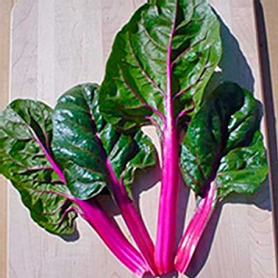 Swiss Chard Garden Seeds - Magenta Sunset - Non-GMO, Heirloom Vegetable Gardening & Microgreens Seeds