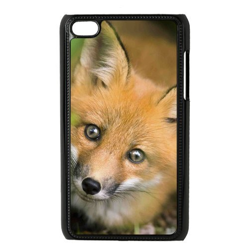 Fox Hard Back Cover Case for ipod touch 4