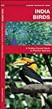India Birds: A Folding Pocket Guide to Familiar Species (A Pocket Naturalist Guide)