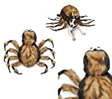 Fuzzy Tarantula Spider Dog Costume Dress Your Pup As Your Favorite Arachnid