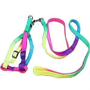 Pets Empire Colourful Adjustable Nylon Puppy Leash Harness, Small