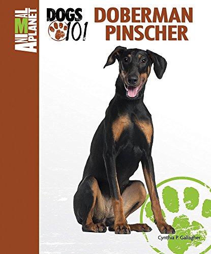 Doberman Pinscher (Animal PlanetTM: Dogs 101) ()