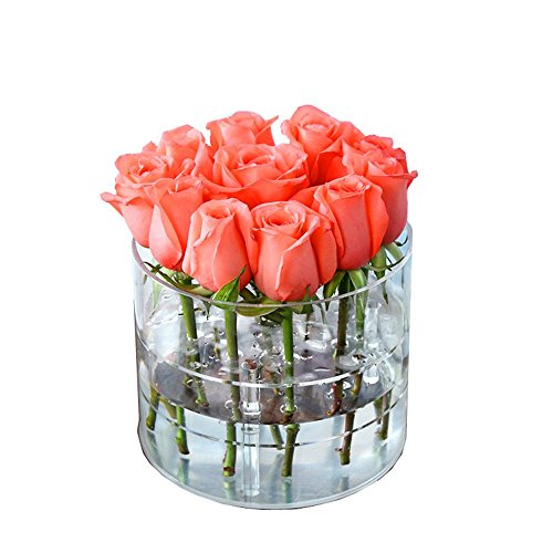 Greatpril Transparent Square Multi-function Water Holder Flower Pot, Eyebrow Pencil & Eyeliner Organizer 11 Hole 2 Tiers