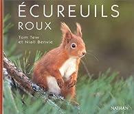 Ecureuils roux par Tom Tew