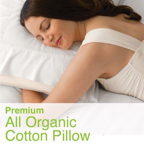 100% All Organic Cotton Fiber Medium Filled Standard Size Pillow