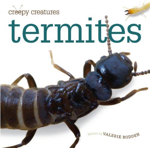 creepy-creatures-termites