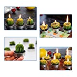 AMASKY Cactus Tealight Candles, Handmade Delicate