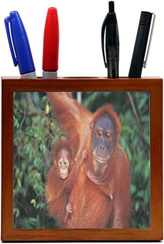 Rikki Knight Orangutan with Baby Design  Inch Tile Wooden...