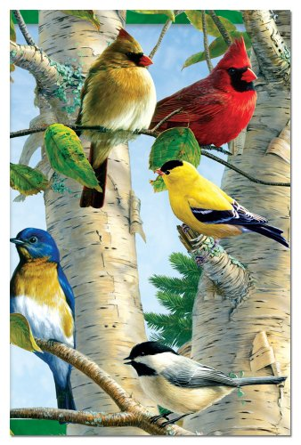 Favorite Songbirds Blank Boxed Note Cards With Envelopes, All Occasion (12 Count), Cute Card for Bird and Cardinal Lovers FS66507 Tree-Free Greetings 12 Boxed Notes