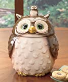 Ceramic Forest Friends Owl Cookie Jar Canister