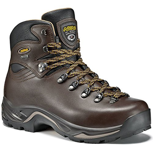 Asolo Women's TPS 520 GV EVO Backpacking Boots Chestnut Brown 6 by Asolo