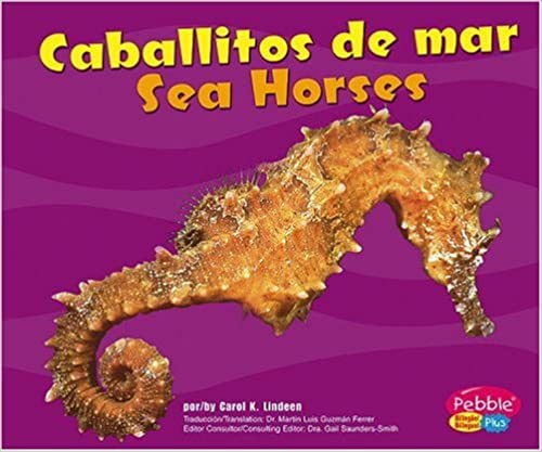 Descargar libros electrónicos txt Caballitos de Mar/Sea Horses (Bajo Las Olas/Under the Sea) PDF 0736899456