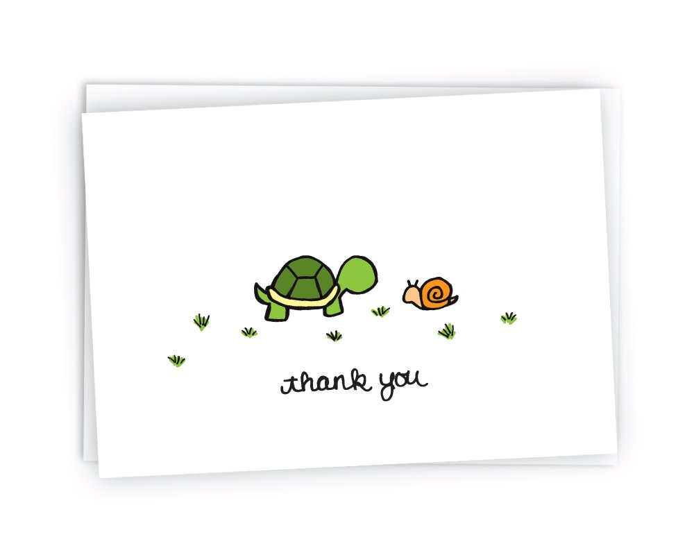 The Turtle & The Snail Nature Thank You Cards - 24 Cards & Envelopes