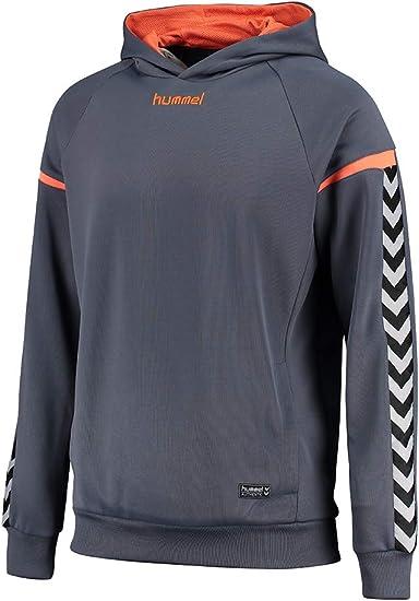 hummel AUTH Charge Poly Hoodie, Todo el año, Hombre, Color Ombre Blue/Nasturtium, tamaño XXL