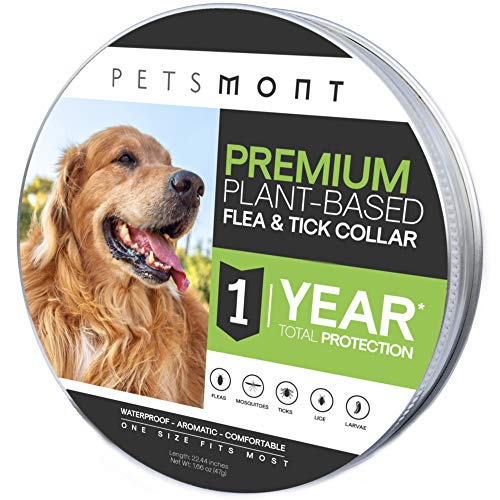 Petsmont Flea Collar for Dogs, Unique Plant Based Formula, Small to Extra Large, 1 Year Protection, Stone Gray Color -