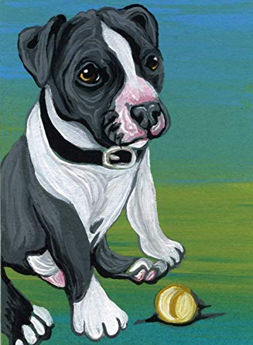 ACEO ATC -Original Miniature Painting-Pit Bull Dog Puppy Play Ball-Carla Smale