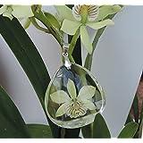 Dije de orquídea natural encapsulada en resina. Prostechea Radiata.