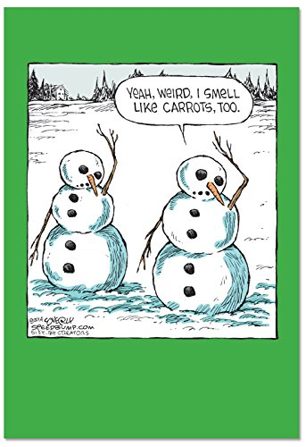 (12 'Carrot Smell Boxed Happy Holidays' Greeting Cards with Envelopes 4.63 x 6.75 inch Stationery Set with Funny Snowman Comic, Festive Christmas, New Year and Season's Greetings Note Cards B2523HHG)