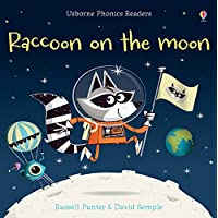 Pho Raccoon on the Moon