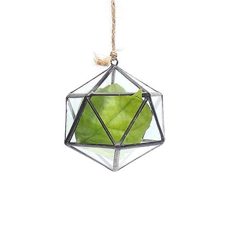 Amazon Com Touch Miss Mini Hanging Triangle Terrarium Glass