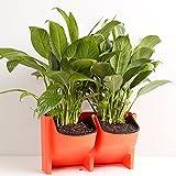 elegantstunning Vertical Wall Self Hanging Planter Flowerpot Indoor/Outdoor Planter Supplies,Orange