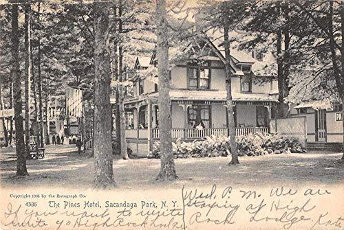 Sacandaga Park New York The Pines Hotel Vintage Postcard JC932064
