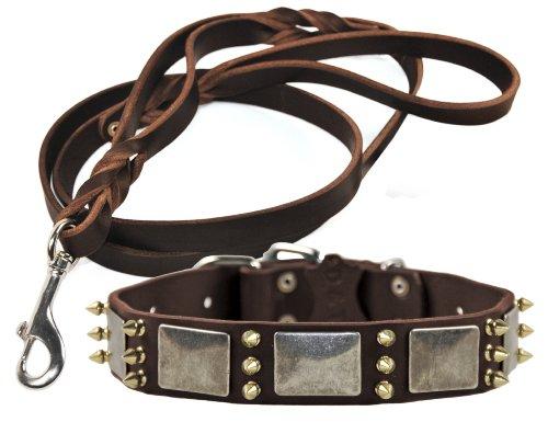 Dean and Tyler Bundle One Devilish Della Collar 22-Inch by 1-1/2-Inch with One Matching Braidy Bunch Leash, 5-Feet…