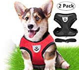 2 Pack Dog Harness Pet Vest Harnesses with Handle, Magnoloran Adjustable Puppy Kitten