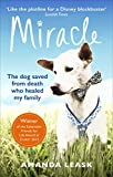 Miracle: The Extraordinary Dog that Refused to Die