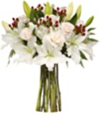 Benchmark Bouquets White Elegance, No Vase