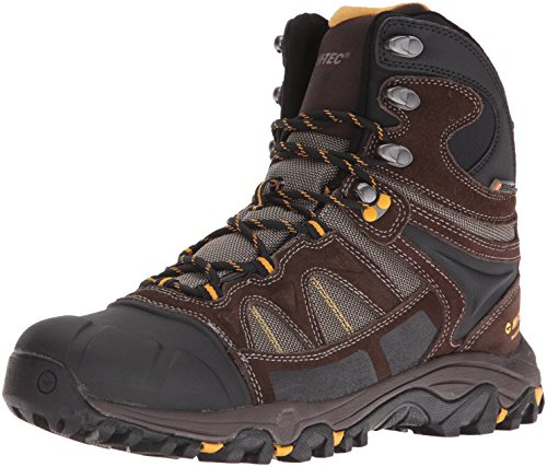 Hi-Tec Men's Altitude Lite 200g Waterproof-M Snow Boot, Dark Chocolate/Bungee Gold, 11 M US