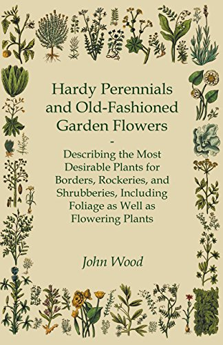 Hardy Perennials and Old-Fashioned Garden Flowers - Describing the Most Desirable Plants for Borders, Rockeries, and Shrubberies, Including Foliage as Well as Flowering Plants